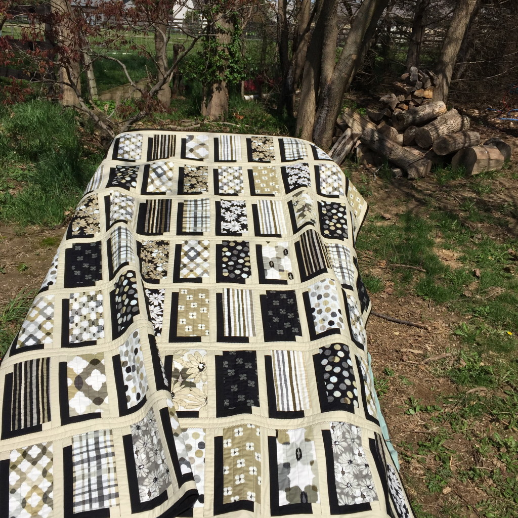 Jenny Doan's Illusion Quilt using Contempo Studios Paintbrush Shadows